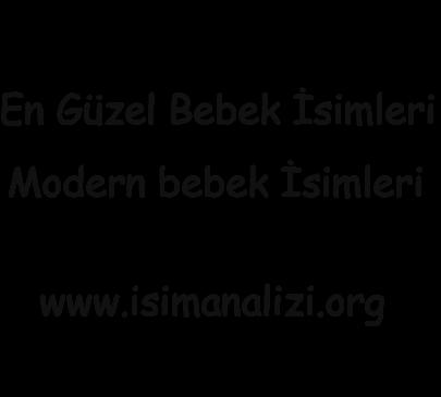 www.isimanalizi.org