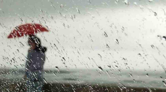 yağmurun şiirleri